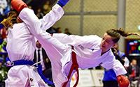 Karate/Katsu